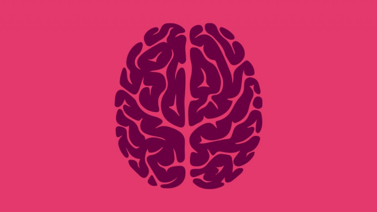 Neurodydaktyka – dlaczego warto uczyć przyjaźnie dla mózgu