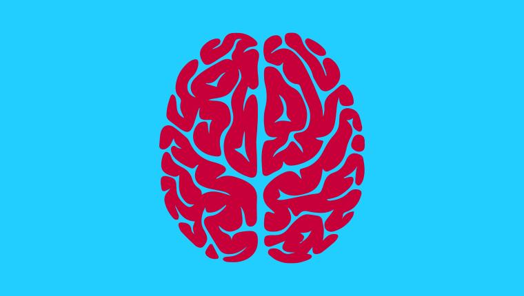 Neurodydaktyka a klasowa praktyka na lekcji języka obcego